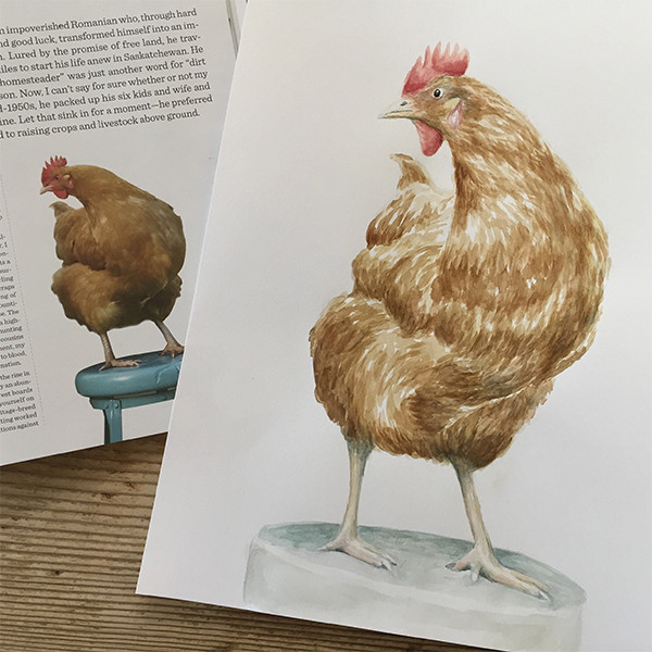 art-chicken